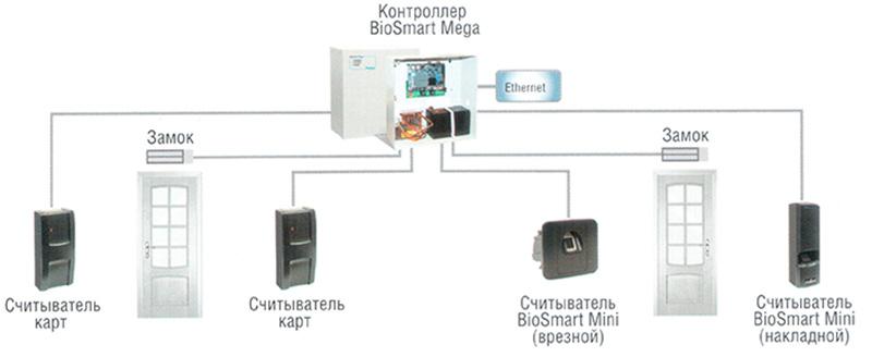 biometriya1